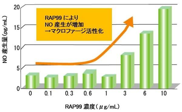 光合成細菌RAP99によりNO産生が増加