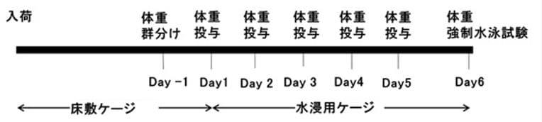 試験のスケジュール